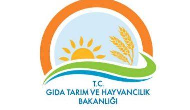 2013 Yılı Hayvancılık Desteklemeleri