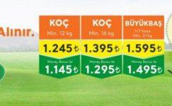 Migros 2019 Kurbanlık Fiyatları Açıklandı