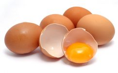 Yumurta Tavukçuluğunda Yumurta Kalitesi