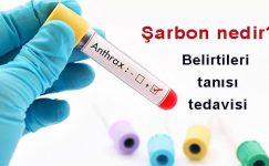 Şarbon (Antrax) Hastalığı ve Mücadelesi